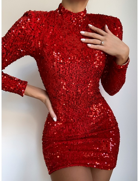 Long Sleeved Dress with Sequins